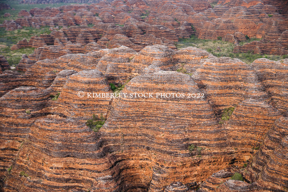 The beehive formations at the Bungle Bungles (Purnululu) in the east Kimberley region of Western Australia.