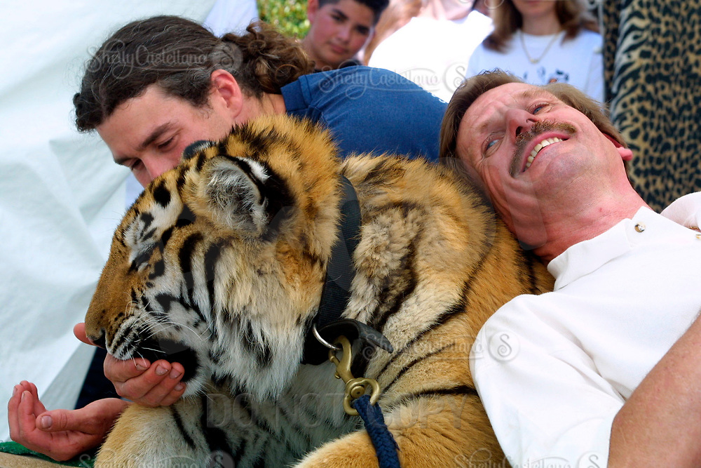 Apr 03, 2002; Lake Elsinore, CA, USA; ABBY HENDENGRAN owner of Tiger Creek snuggles with TUFFY a Siberian Tiger while getting fed @ Tiger Creek, a non-profit organization dedicated to the conservation of endangered wildcats. <br />