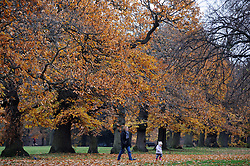 © Licensed to London News Pictures. 02/12/2013<br />