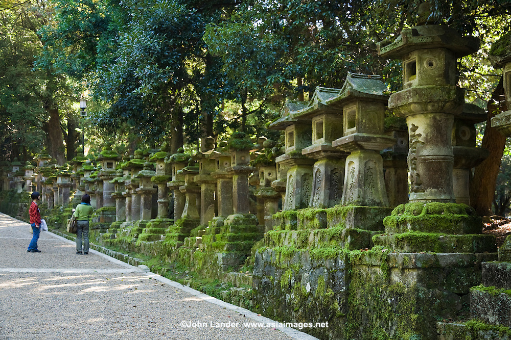 Moss Covered Japanese Lanterns at Kasuga Shrine which is famous for its many lanterns which were donated by worshippers.  The stone lanterns lining the shrine's approach are lit on the occasion of the Lantern Festival held in both February and August.