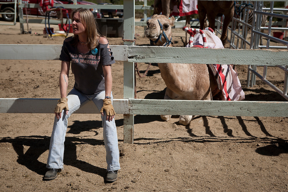 Camel jockey Carla Burrell waits between heats at the 51st annual International Camel Races in Virginia City, Nevada  September 12, 2010. .CREDIT: Max Whittaker for The Wall Street Journal.CAMEL