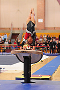 January 17, 2010; Stanford, CA, USA; Stanford Cardinal gymnast Allyse Ishino performs on the vault during the meet against the Arizona Wildcats at Burnham Pavilion. The Cardinal defeated the Wildcats 196.025-194.675. Mandatory Credit: Kyle Terada-Terada Photo