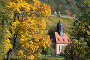 Weinbergkirche zum Heiligen Geist, Weinberge, Pillnitz, Sächsische Schweiz, Elbsandsteingebirge, Sachsen, Deutschland | vineyard Church, vineyards, Pillnitz, Saxon Switzerland, Saxony, Germany