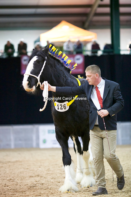Alistair King's COTEBROOK LOCH ANNA  (No.126)<br />