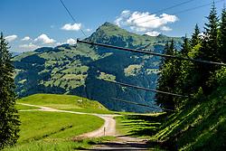 THEMENBILD - Der Blick von der Steilhang ausfahrt in den Brückenschuss mit dem Kitzbüheler Horn im Hintergrund, aufgenommen am 26. Juni 2017, Kitzbühel, Österreich // The view from the steep slope in the Brückenschuss with the Kitzbüheler Horn in the background at the Streif, Kitzbühel, Austria on 2017/06/26. EXPA Pictures © 2017, PhotoCredit: EXPA/ Stefan Adelsberger