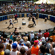 An estimated 7,000 people attend the 28th annual Hog Wrestling Competition at Caldron Falls Bar in Twin Bridge, Wis., on July 20, 2013. Lukas Keapproth/Press Gazette Media