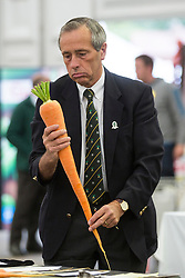 © Licensed to London News Pictures. 18/09/2015. Harrogate, UK. Judging has taken place in the Giant Veg competition at the Harrogate Autumn Flower show. Photo credit: Andrew McCaren/LNP