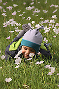 A three year old toddler in a field of spring flowers