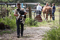 Humane Society of Charlotte vice-president of operations Jorge Ortega carries a dog during a raid on a puppy mill in Johnston, SC on Tuesday, Sept. 11, 2012. HSUS workers found over 200 dogs, nine horses and 30-40 fowl.
