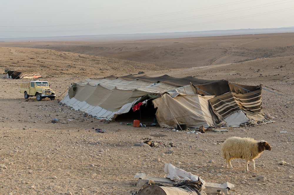 Bedouin tents near the town of Qadisiyya, Jordan. The tents rarely move, since there are few places left open for grazing - instead, fodder and water are delivered to their tent by truck.