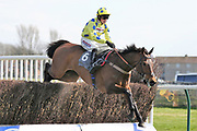 SECRET INVESTOR (6) ridden by Harry Cobden and trained by Paul Nicholls winning The Class 1 Jordan Electrics Ltd Future Champion Novices Steeple Chase over 2m 4f (£45,000)  during the Scottish Grand National race day at Ayr Racecourse, Ayr, Scotland on 13 April 2019.