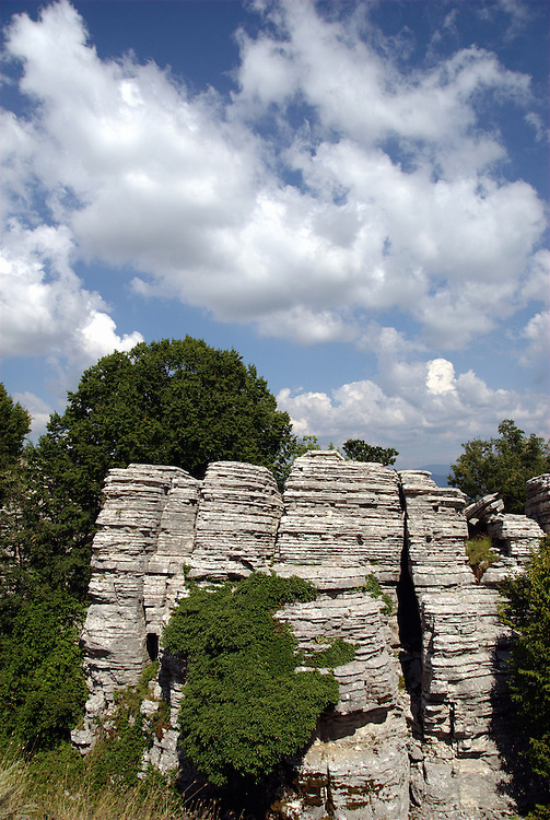 The stone forest of Monodendri village, Zagoria area,  Ioannina Prefecture, Epirus region, north-western Greece.