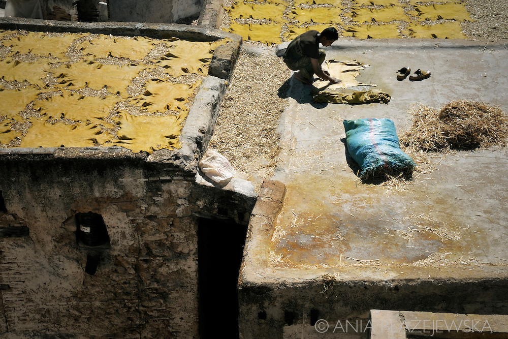 Morocco, Fez. Traditional old tanneries in Fez.