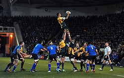 Courtney Lawes (Northampton) wins lineout ball - Photo mandatory by-line: Patrick Khachfe/JMP - Tel: Mobile: 07966 386802 07/12/2013 - SPORT - RUGBY UNION -  Franklin's Gardens, Northampton - Northampton Saints v Leinster - Heineken Cup.