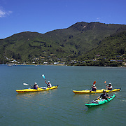 Kayakers on the water of the Marlborough Sounds at the northern end of the South Island of New Zealand..Covering some 4,000 square kilometers of sounds, islands, and peninsulas, the Marlborough Sounds lie at the South Island's north-easternmost point, between Tasman Bay in the west and Cloudy Bay in the south-east. The main sounds, are Queen Charlotte Sound,  Pelorus Sound and Kenepuru Sound. Marlborough Sounds, New Zealand, 28th January 2011.  Photo Tim Clayton.