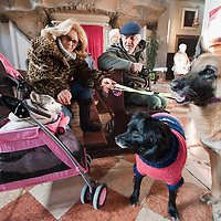 VENICE, ITALY - JANUARY 15: A man and  a woman with their dogs attend a special service with a blessiing of  pets and animals held by Don Filippo Chiafoni Chaplain of the Church of S Francesco da Paola on January 15, 2012 in Venice, Italy. The blessing of animals and pets is a very ancient tradition dating back from San Francis of Assisi.