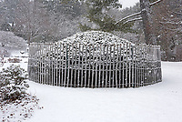 Mugo pine surrounded by snow fencing at the Asticou Azalea Garden, Northeast Harbor, Maine