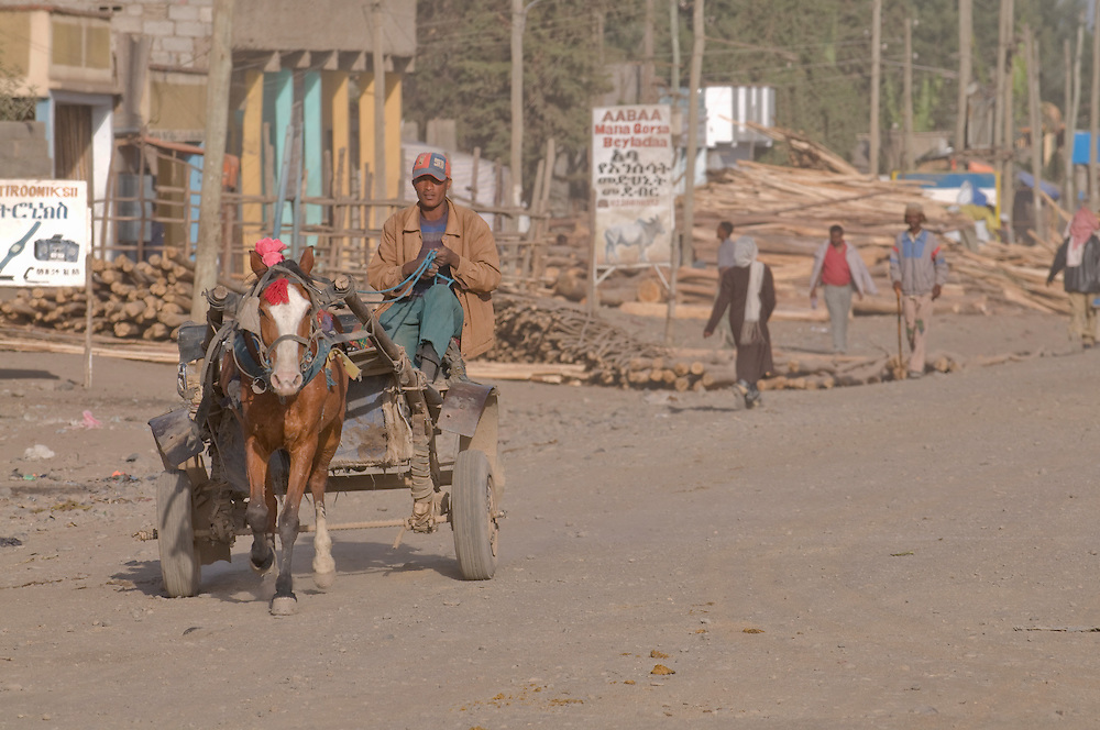 Horse cart on a dusty road, Bale moutain,Ethiopia,Africa