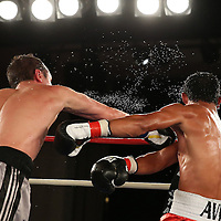 Andrey Klimov (black/grey shorts) beats Guillermo Avila during a Telemundo boxing match at the A La Carte Pavilion  on Friday, August 1, 2014 in Tampa, Florida. (AP Photo/Alex Menendez)