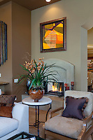 View of modern fireplace in living room