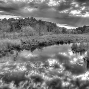 Storm clouds over a freshwater marsh at the Mass Audubon Ipswich River Wildlife Sanctuary, Topsfield, MA
