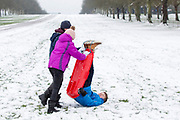UNITED KINGDOM, Windsor: 01 February 2019. <br /> Millie Wellington 12 (pink) Thomas Bartoletti 13 (back) and Joe Wellington 12 (blue) enjoy the snow along The Long Walk in Windsor this morning. A number of schools, including their schools of St Edwards Middle School and Windsor Boys School were closed today because of the adverse weather. <br /> Rick Findler / Story Picture Agency