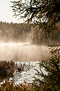Sunrise and fog along a boggy lake of the Hiawatha National Forest near Munising Michigan in autumn.