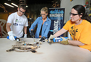 Restoration expert Nicole Curtis, center, DB Lampman, right, of Staten Island MakerSpace, and Micah Snyder, left, use Bernzomatic blowtorches to patina an activity table at the launch event for the Bernzomatic Find Your Fire Community Grants program, Thursday, Oct. 22, 2015, in New York.  MakerSpace is a community center still feeling the effects of Hurricane Sandy three years later.  Bernzomatic, the industry leader in handheld torches, is encouraging people to submit a community project for a chance to win one of three $10,000 grants and a visit from Curtis. Go to Bernzomatic.com/Grants for more information. (Photo by Diane Bondareff/Invision for Bernzomatic/AP Images)