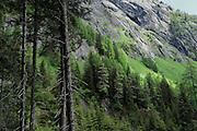 Umbaltal westlich von Hinterbichl im Nationalpark Hohe Tauern in Österreich.