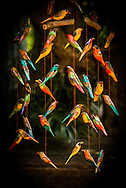 This carved wood and painted mobile of local birds was carved and painted by workers at the Kiambethu Tea Farm outside Nairobi, Kenya.<br />