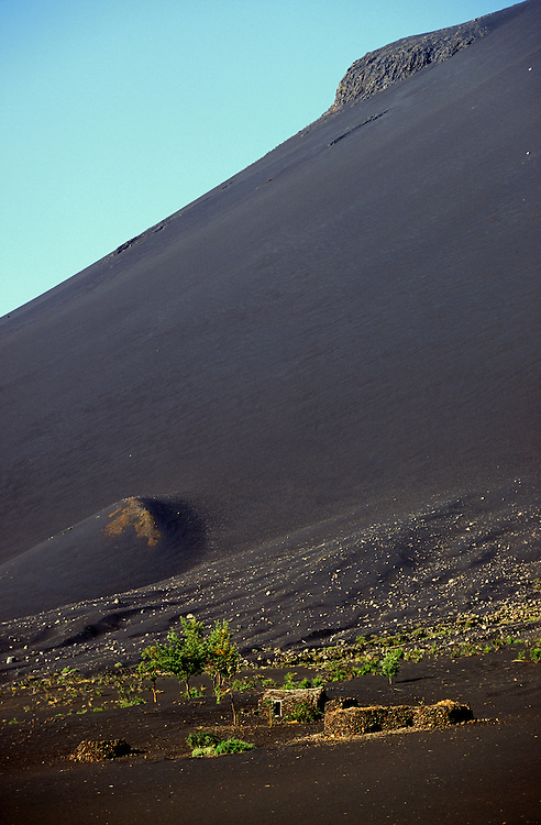 Fogo volcanos had its most recent eruption in 1995. Inside the massive caldera a little dispersed village survives due to the rich volcanic soil and its inhabitants grow vineyards and fruit trees.