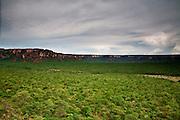Chapada dos Guimaraes_MT, Brasil...Imagens do Parque Nacional da Chapada dos Guimaraes no Estado do Mato Grosso. Na foto  Vale do Rio Claro...The Chapada dos Guimaraes National Park  is a national park in the Brazilian state of Mato Grosso. In this photo Vale do Rio Claro...Foto: JOAO MARCOS ROSA  /NITRO..