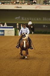 MASSIGNAN Stefano, Yellow Jersey<br /> Kentucky - Alltech FEI WEG 2010<br /> /Stefan Lafrentz