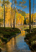 Reflection at Deb's Meadow on Owl Creek Pass. The movie 'True Grit' with John Wayne was filmed nearby in 1969.
