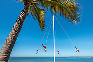 The Pampantla Flying Birdmen on the Puerto Vallarta Malecon performing in traditional costumes suspended upside down from a pole by palm tree. The Bay of Banderas and blue sky are in the background.