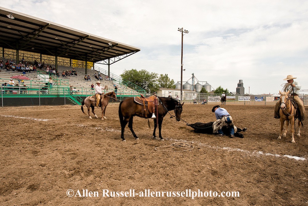 Will James Roundup, Ranch Rodeo, Three Man Cow Doctoring, Hardin, Montana, Tom Curtin, Ed Disney, Todd Hansen.