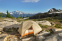 Tent in backcountry campsite. Yellow Aster Butte Basin, Mount Baker Wilderness. North Cascades Washington