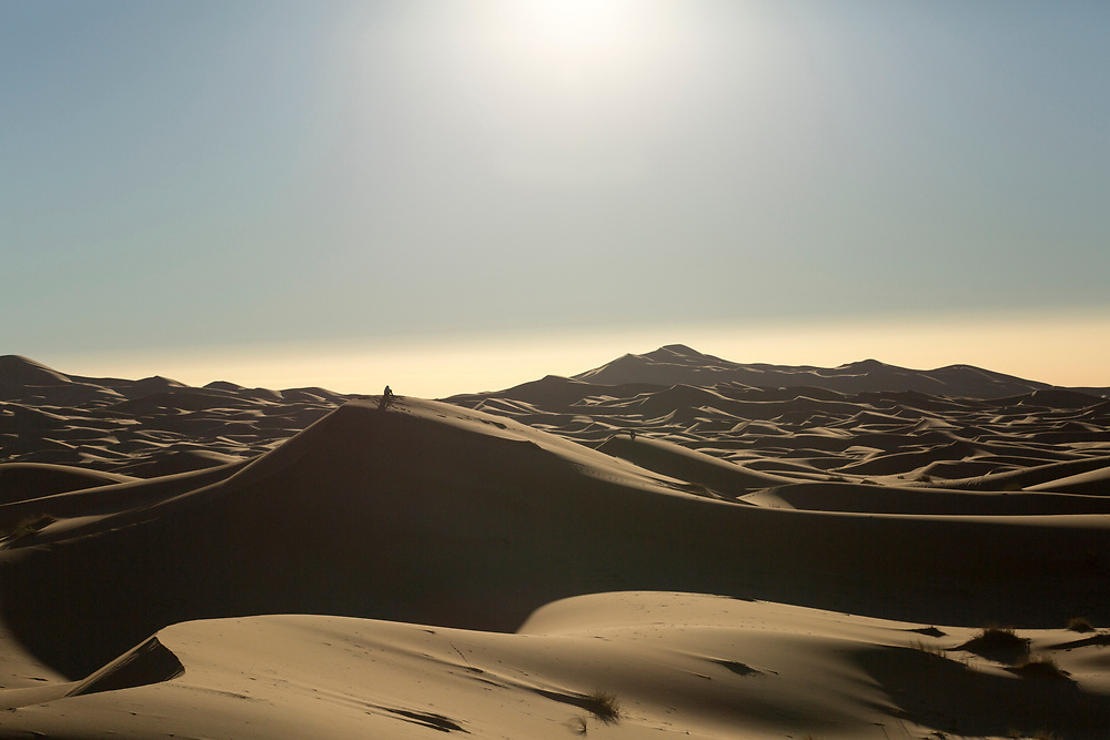"""Sahara Desert landscape, Merzouga, Erg Chebbi region of the Moroccan Sahara, Southern Morocco, 2015-11-03.<br /><br />The Moroccan Sahara desert is divided into two main regions; Erg (""""dune"""") Chebbi and Erg Chigaga. <br /><br />The Erg Chebbi region is more easily accessed from both Fez and Marrakesh, with well built asphalt roads taking you right upto the face of the dunes. It sees increased tourism as a result. A short walk from the historic trans-Saharan caravan-route town of Merzouga, and you'll find yourself immersed by the Chebbi dunes. The drive alongside towering walls of sand dunes as you approach in itself is a spectacle. The Chebbi region has the tallest dunes in Morocco, which is another reason as to why its the most popular choice, and its views of mountains in Algeria in the distance is not to be missed. <br /><br />Whether bound for the """"chebbi"""" or the """"chigaga"""" dunes, your journey from the Imperial cities of Fez or Marrakech will take you through significant changes in landscape, from barren rocky plateaus to lush Oasis valleys, before reaching the desert itself."""