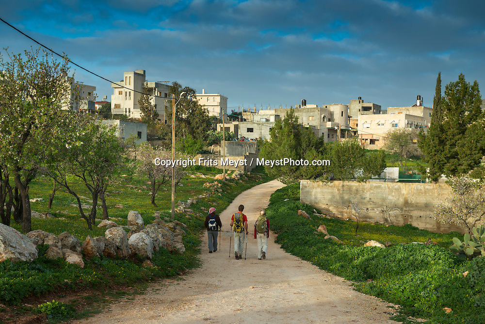Palestine, March 2015. Hikers on the trail in the village of Duma. The Abraham Path is a long-distance walking trail across the Middle East which connects the sites visited by the patriarch Abraham. The trail passes through sites of Abrahamic history, varied landscapes, and a myriad of communities of different faiths and cultures, which reflect the rich diversity of the Middle East. Photo by Frits Meyst / MeystPhoto.com for AbrahamPath.org