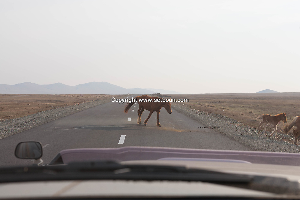 Mongolia. the road to LUN   - Mongolia  /route de Lun   - Mongolie /MNG431