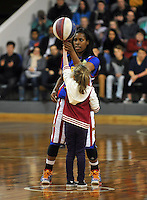 Harlem Globetrotters entertain the crowd at the New Zealand 'You write the rules' visit to Dunedin, Otago, Lion Foundation Arena, Dunedin, Otago, New Zealand, Friday, May 29, 2013. Photo: Joe Allison / Allison Images