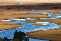 Flat Creek on the National Elk Refuge