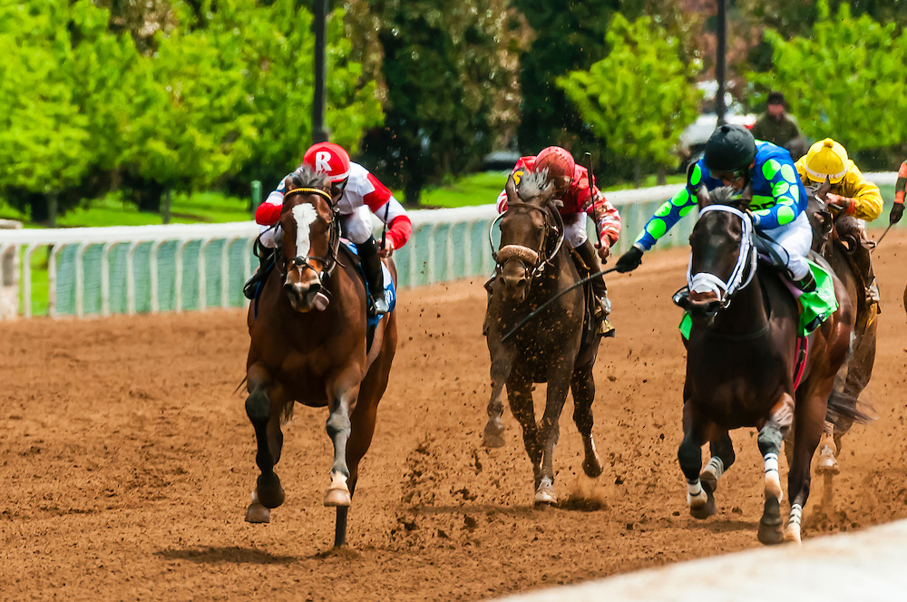 Horse racing on the dirt track  at Keeneland Racecourse, Lexington, Kentucky USA.