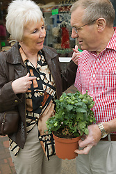 Older couple with a tomato plant outside a green grocer shop,