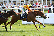SLEEPING LION (5) ridden by Jamie Spencer and trained by James Fanshawe winning The William Hill Mallard Handicap Stakes over 1m 6f (£40,000) during the third day of the St Leger Festival at Doncaster Racecourse, Doncaster, United Kingdom on 13 September 2019.