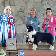 Malibu Kennel Club 06/23/2019