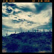 Ridge line. Arizona.