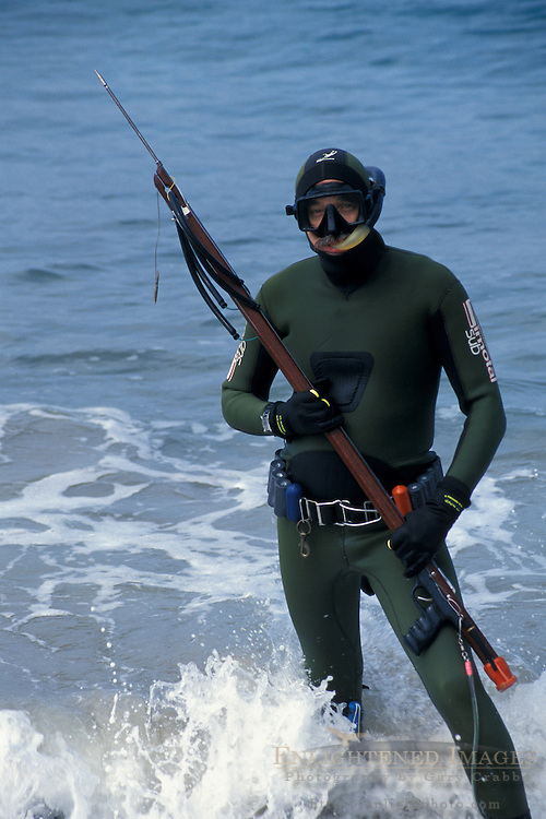 Spear fishing diver in wetsuit enters ocean water waves at Point Dume State Beach near Malibu, Los Angeles County, California