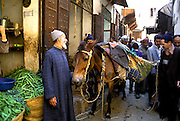 MOROCCO, FEZ Medina; activity in labyrinth of streets in the old city