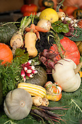 Fall vegetables on display.  Squamish, pumpkin, carrots, beets, turnips, kale, and curries.  The North Arm Farm, Pemberton BC, Canada.  Thursday, Oct 12, 2017.